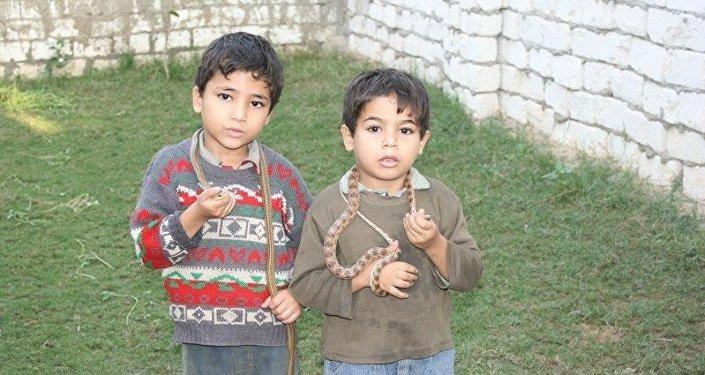 أطفال قرية مصرية يمكسون بالثعابين