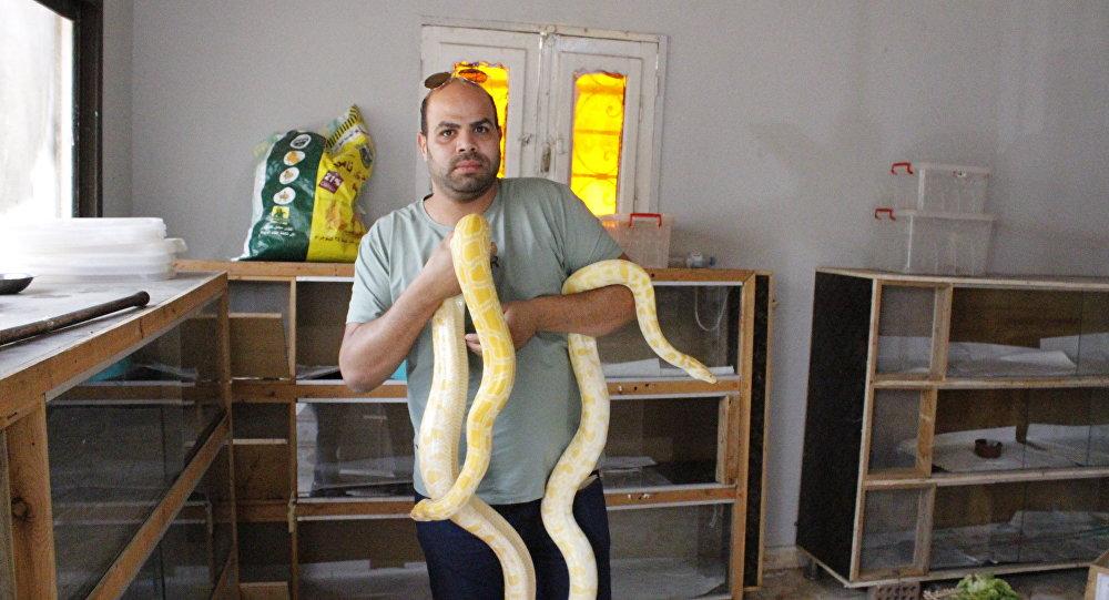 رجل يربي الزواحف في قرية مصرية