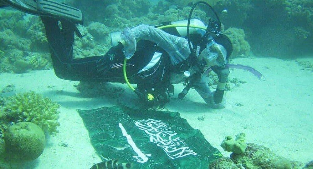 الغواصة السعودية مريم حامد فردوس