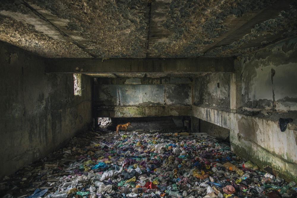 صورة بعنوان Sacartvelo لمصفى في الزمن السوفيتي، من قبل المصور ريان كوبمانس من كندا، الذي دخل ضمن قائمة المرشحين النهائيين لمسابقة جوائز فن التصوير المعماري 2018 في فئة المباني المستخدمة