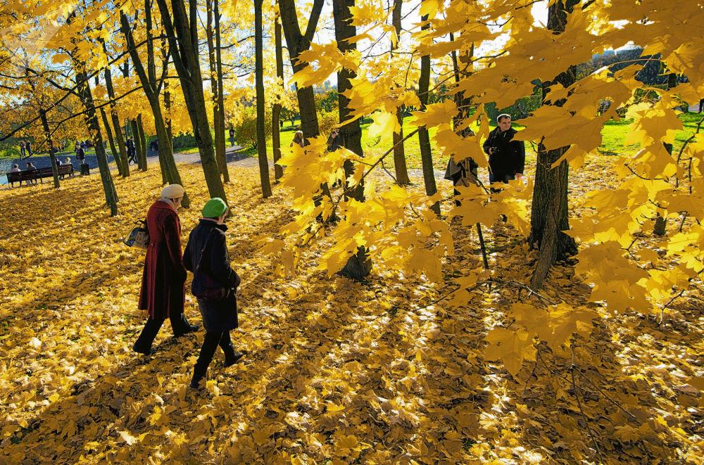 شخصان في منتزه كولومينسكويه الحكومي في موسكو