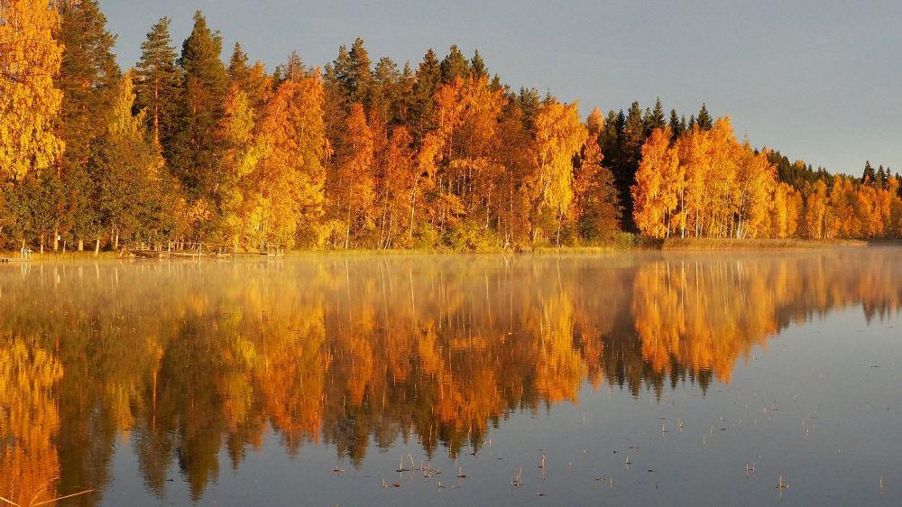 منظر خريفي في فنلندا