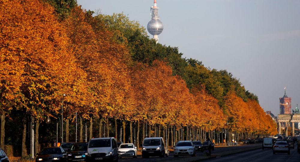 أشجار الخريف في حديقة تيرغارتن (Tiergarten park) في برلين، ألمانيا