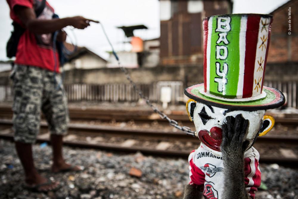 صورة (The sad clown)، للمصور جوان دي لا مالامن إسبانيا، الفائز في فئة تصوير صحفي  بالمسابقة
