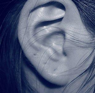 العلماء: يمكن الحصول على أذن بشرية من التفاح