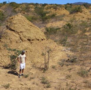 اكتشاف السر وراء وجود ملايين التلال الغامضة في البرازيل