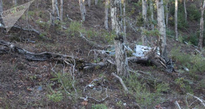 لجنة التحقيق تنشر صورا من موقع تحطم الطائرة سو-24إم في سوريا