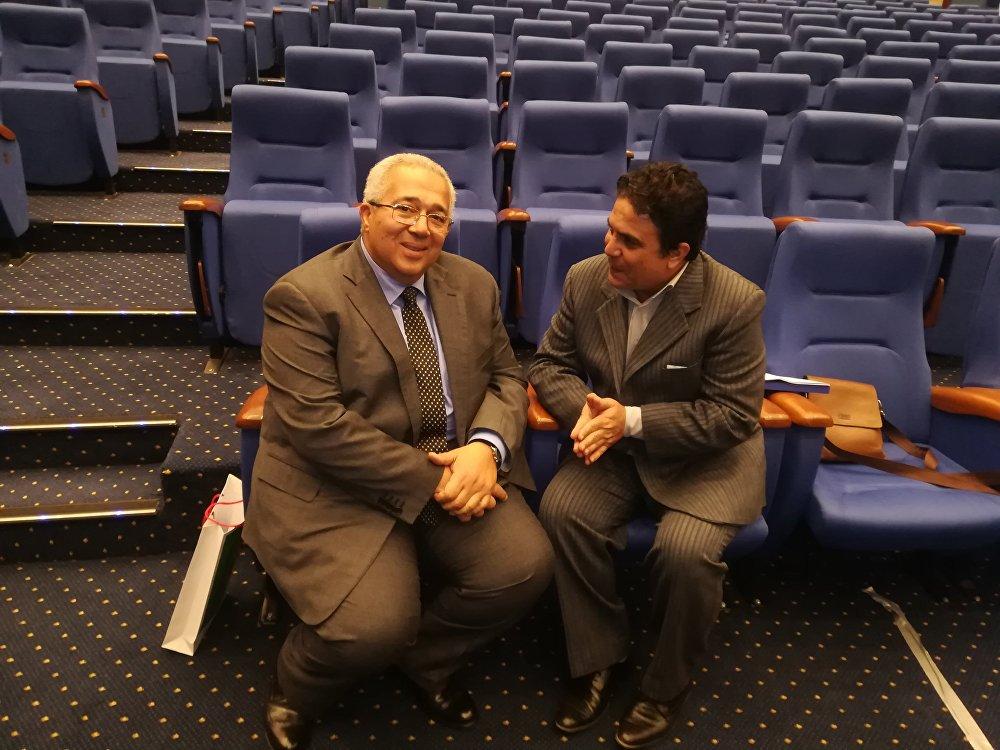 مساعد وزير الخارجية المصري في حوار لـسبوتنيك