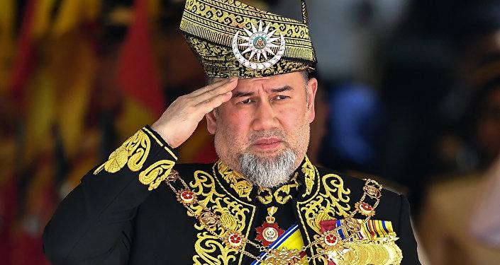 السلطان محمد خامس