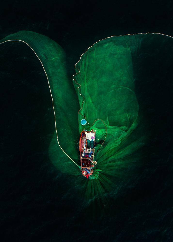 صورة زهرة على البحر، للمصور ترانغ بهام هيوي من فيتنام