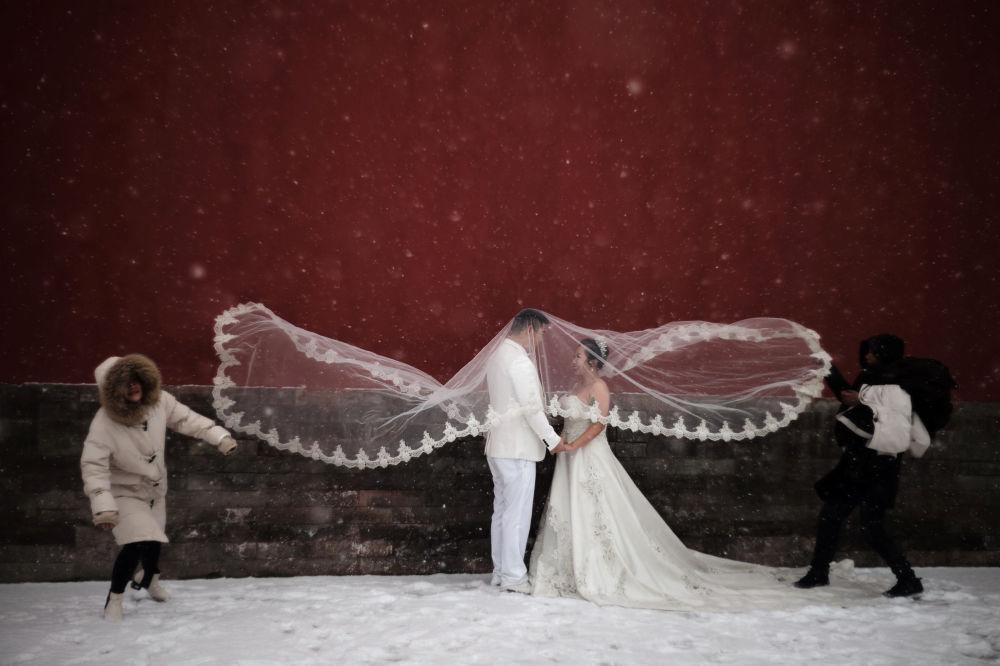 جلسة تصوير لحفل زفاف أثناء تساقط ثلوج في بكين، الصين 12 فبراير/ شباط 2019