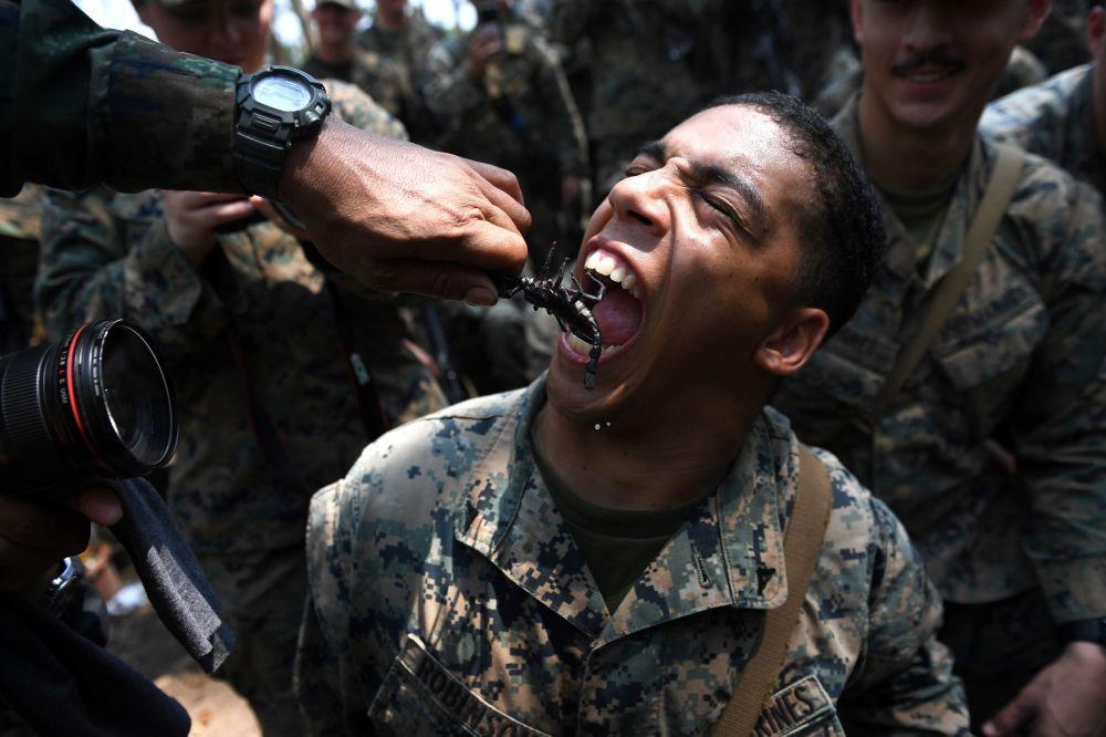ابتسامة أحد مشاة البحرية الأمريكية يأكل عقرباً، خلال التدريبات العسكرية المشتركة كوبرا غولد (Cobra Gold) في مقاطعة تشونبوري الساحلية في 19 فبراير/ شباط 2018.