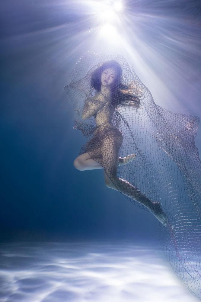صورة بعنوان تحّول (Switch) للمصور الصيني بينغ صان (Ping Sun)، الحائز على جائزة الإشادة بشدة في فئة حماية البيئة البحرية