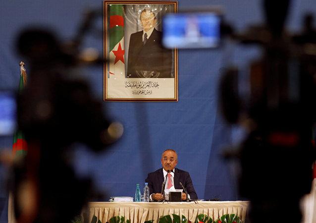 نور الدين بدوي، رئيس الحكومة الجزائرية الجديدة
