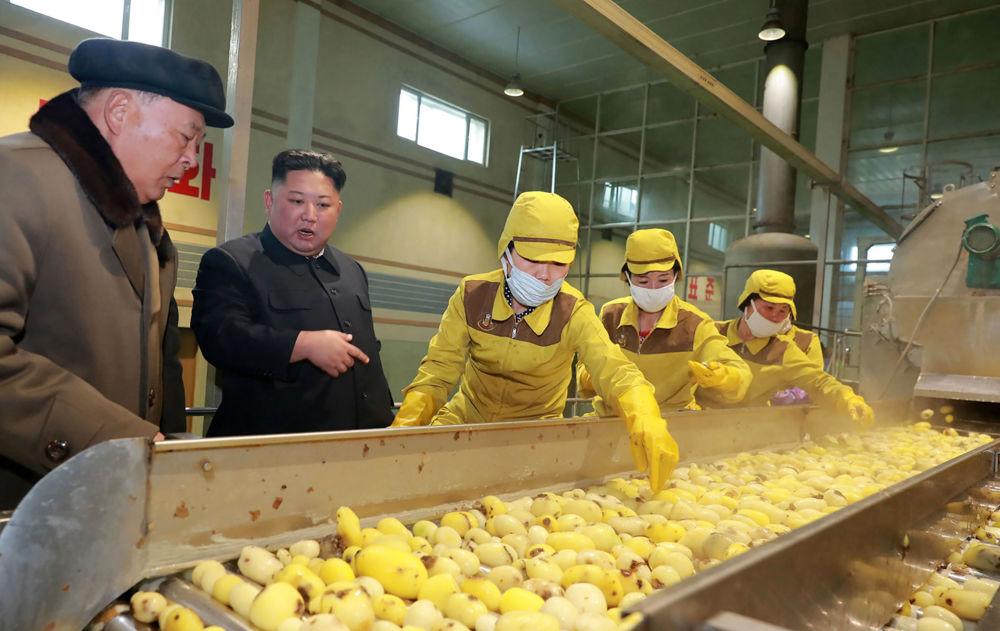 زعيم كوريا الشمالية كين جونغ أون في مصنع البطاطا في سامجيون، كوريا الشمالية 4 أبريل/ نيسان 2019