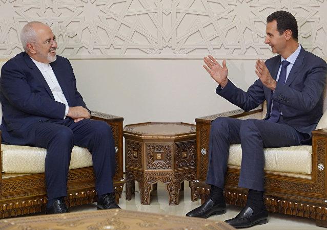 ظريف والأسد