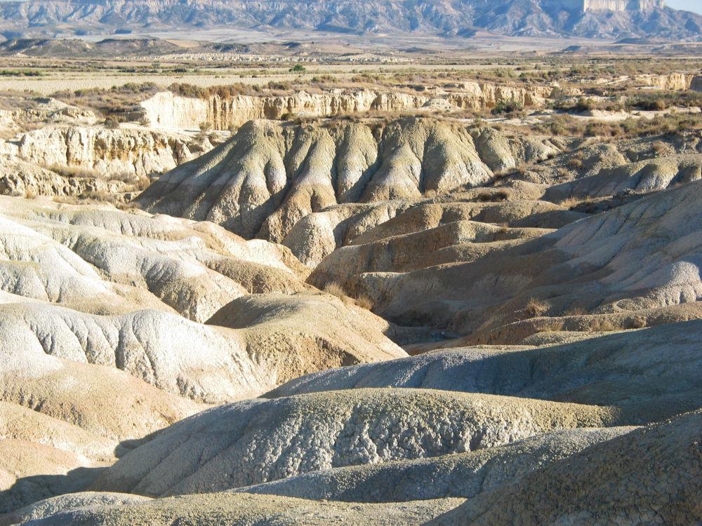 بارديناس رياليس، هي شبه صحراء تقع في نافارا في إسبانيا