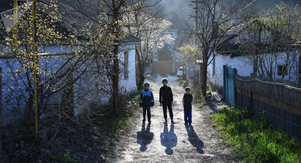 أطفال في الشارع بقرية زاليسنويه في مقاطعة باختشيساراي في شبه جزيرة القرم