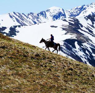 ركوب الخيل في الجزء الشمالي من المحمية الطبيعية القوقازية باسم خ. غ. شابوشنيكوف