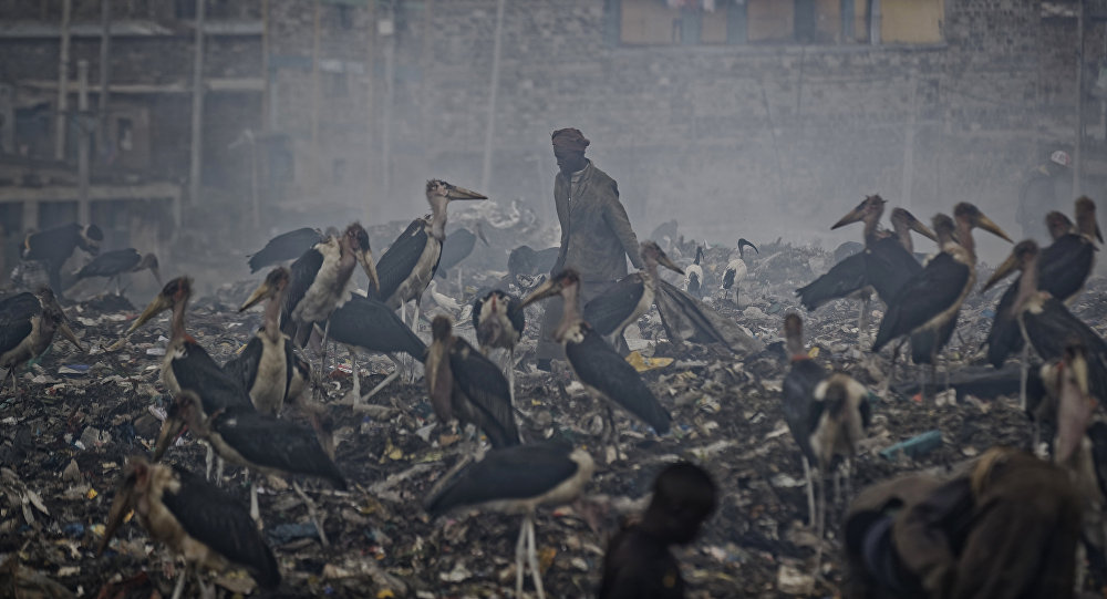 امرأة تنظف مواد قابلة لإعادة التدوير من القمامة من أجل لقمة العيش من خلال سحابة من الدخان من القمامة المحترقة وتحيط بها اللقالق التي تتغذى على القمامة في مكب الأحياء الفقيرة في نيروبي بكينيا