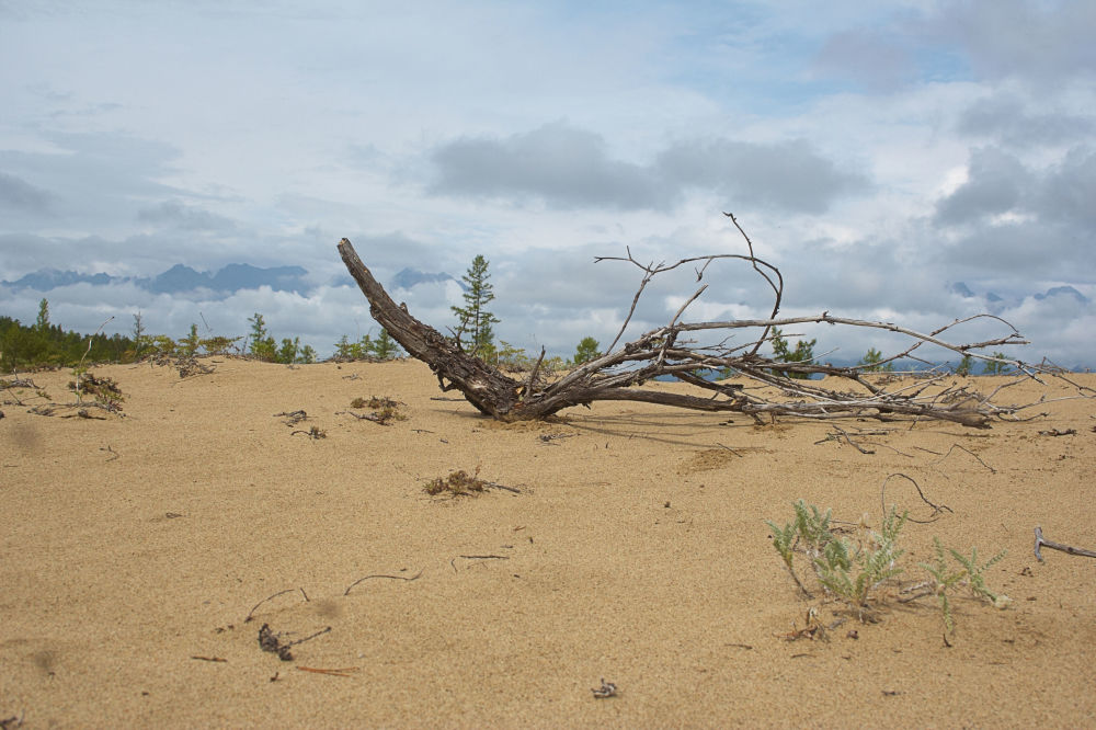 """صحراء تشارا أو """"رمال تشارا"""" وسط سيبيريا في الشرق وشمال شرق روسيا 1041580720"""