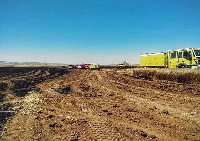 الحرائق تجتاح تونس وتهدد المحاصيل الزراعية