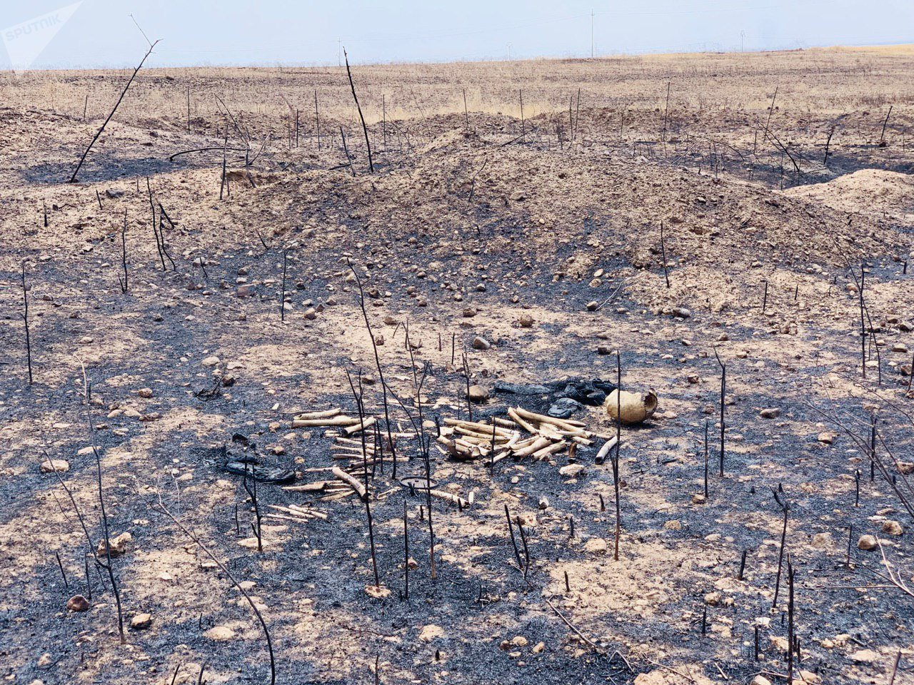 محارق الأيزيدين في شمال العراق