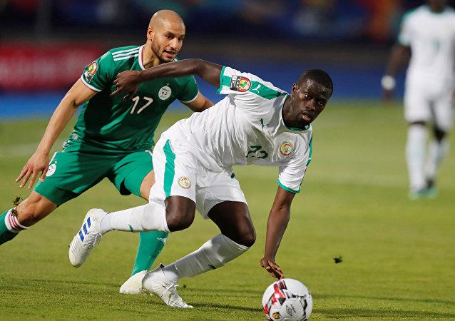 الجزائر والسنغال
