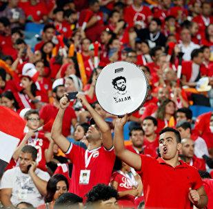 جماهير منتخب مصر