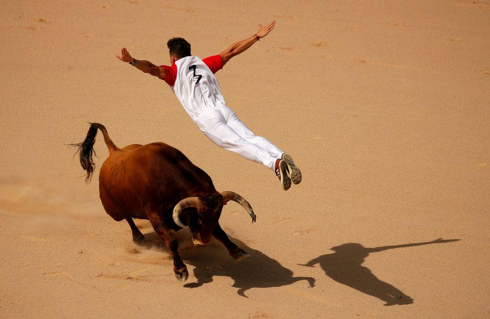 أحد الـريكورتادور يقفز فوق الثور خلال مسابقة مصارعة الثيران في مهرجان سان فيرمين في بامبلونا، إسبانيا 13 يوليو/ تموز 2019