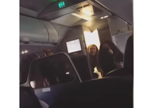 خفاش يطير في طائرة