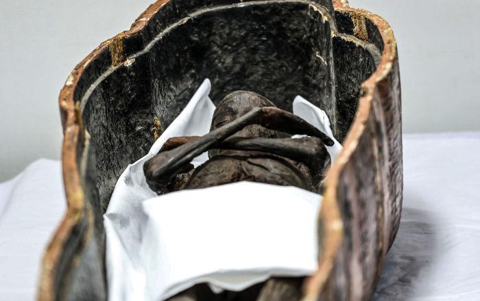 مومياء سنجام، مسؤول العمال (رئيس العمال) خلال عصر الفرعون سيتي الأول ورمسيس الثاني للأسرة 19 (القرن 13-12 ق.م.)، في المتحف القومي للحضارة المصرية، 21 سبتمبر/ أيلول 2019