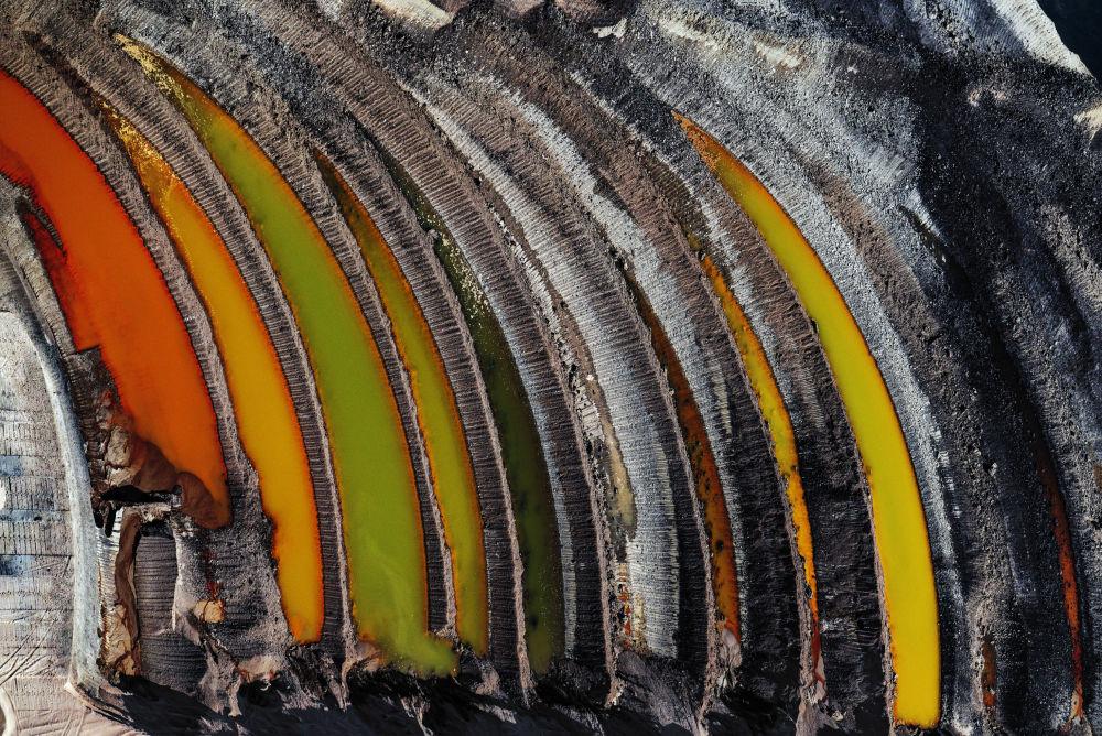 صورة بعنوان بقايا الغابة، للمصور جي هنري فير، الحاصل على جائزة تغير المناخ والطاقة لعام 2019، في مسابقة المصور البيئي لعام 2019