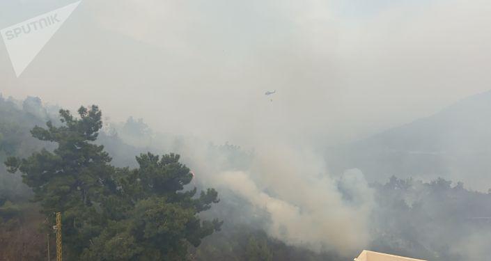 حرائق ضخمة تلتهم المساحات الحرجية في لبنان