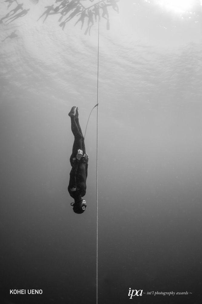 صورة بعنوان تحت سطح منافسة الغوص الحر (Beneath the surface of competitive Freediving)، للمصور لكوهي أوينو، الفائز في فئة أفضل مصور رياضي لهذا العام، ضمن جوائز المحترفين للمسابقة الدولية للتصوير لعام 2019