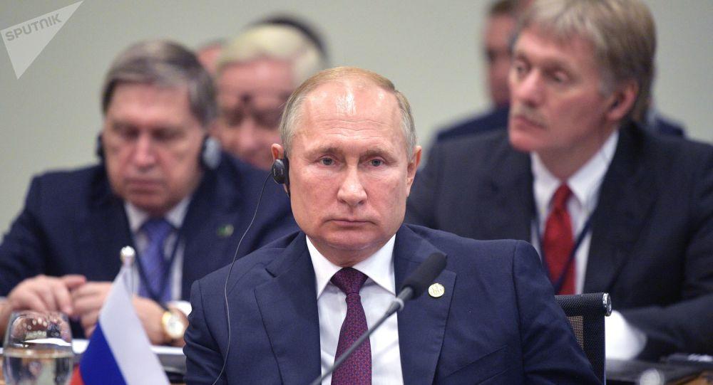 الرئيس فلاديمير بوتين في قمة بريكس في البرازيل، 14 نوفمبر 2019