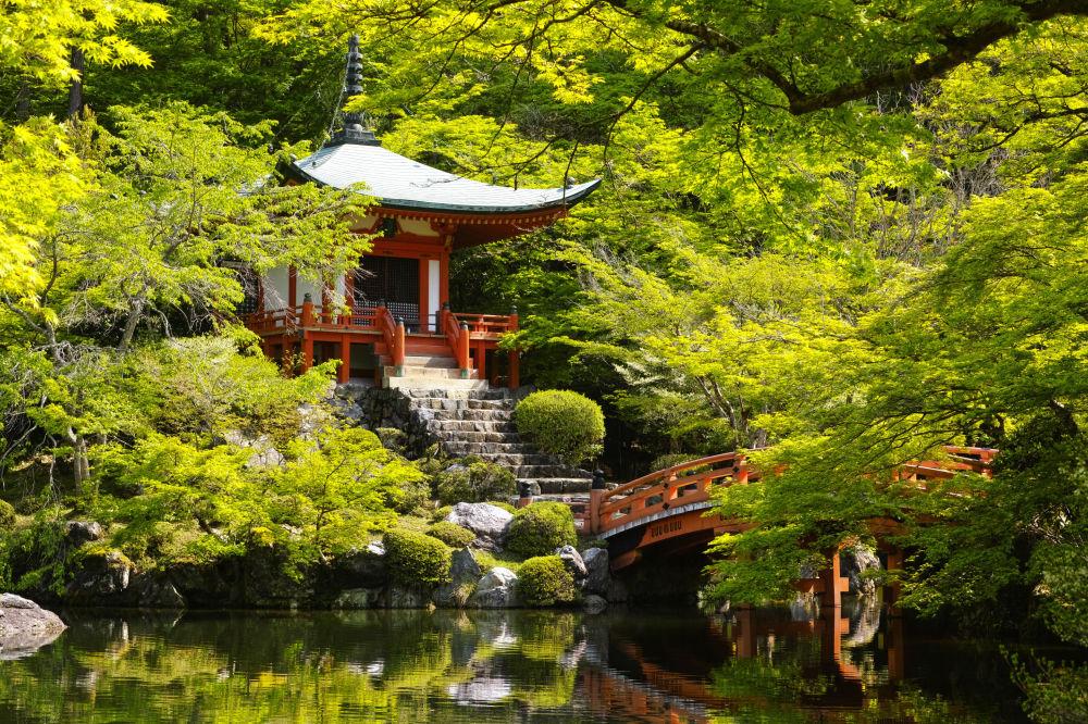 معبد بوذي دايجو جي في كيوتو اليابانية وغيره، يحظر التصوير كليا لاظهار الاحترام للناس الذين يحاولون العبادة أو الاستمتاع بالمناظر الطبيعية في سلام.