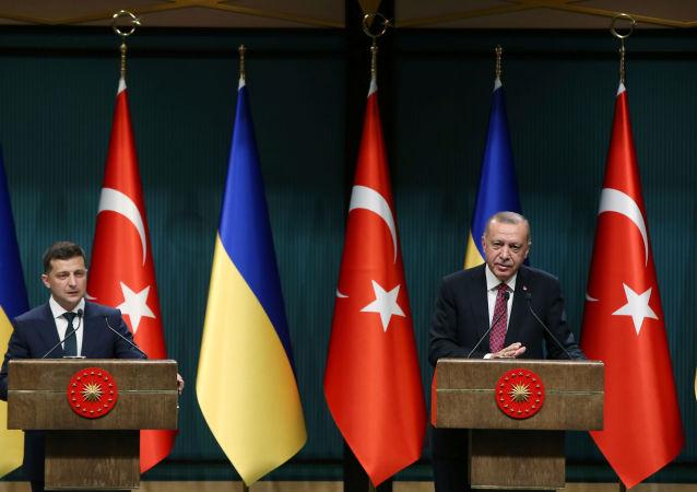 رجب طيب أردوغان وزيلينسكي