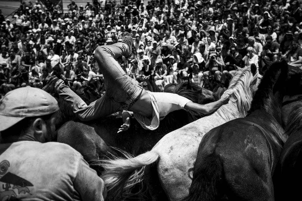 صورة بعنوان Rapa_0008، من سلسلة الوحش الأسود من قبل المصور البرتغالي دييغو بابتيستا، مُدرجة في القائمة القصيرة لجائزة سوني العالمية للتصوير 2020 في فئة اكتشاف