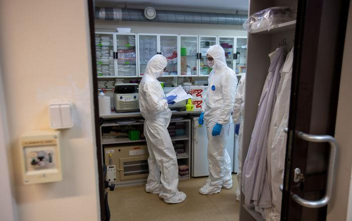 اختبار فيروس كورونا يعتمد على دماء حيوان بحري