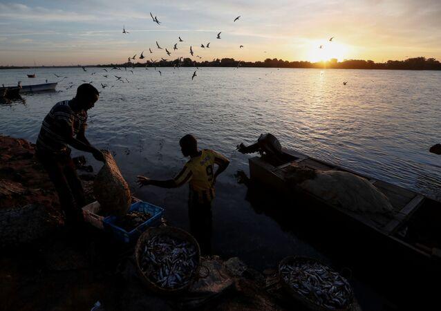 أزمة المياه في السودان، سد النهضة الإثيوبي، فبراير 2020