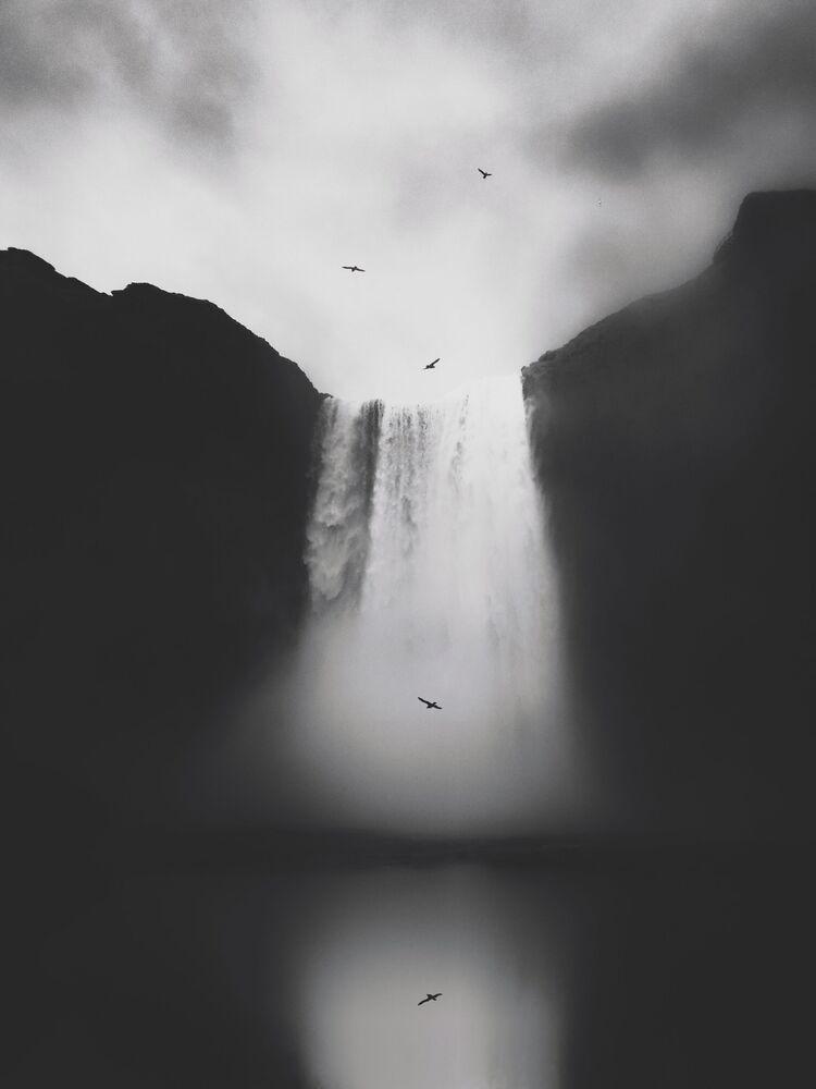 صورة بعنوان غير معنون، للمصور الصيني ليزي لي، الحائزة على الجائزة الرئيسية في فئة التصوير الطبيعة في جوائز مسابقة مصور العام في التصوير بواسطة الهاتف المحمول أيفون لعام 2020
