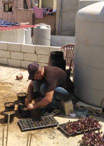 تدوير النفايات وتحويلها إلى سماد عضوي في مخيم برج البراجنة للاجئين الفلسطينيين