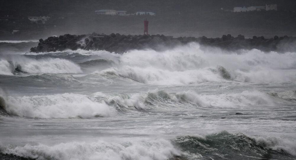 اعصار اليابان