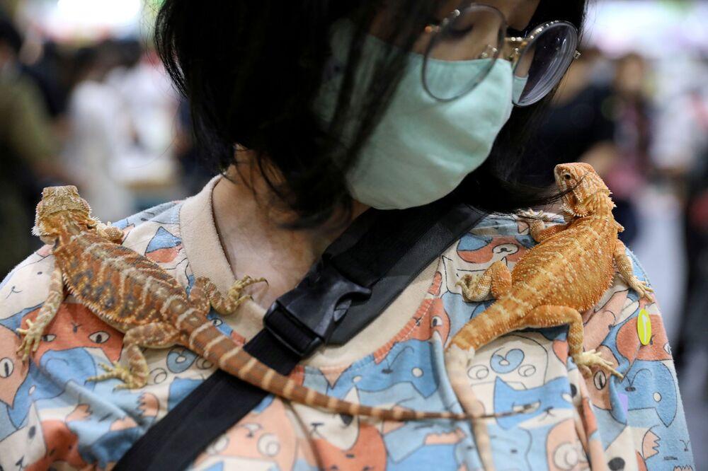امرأة تحمل أبو بريص على كتفها في معرض الحيوانات الأليفة بتايلاند في بانكوك، تايلاند، 6 سبتمبر 2020