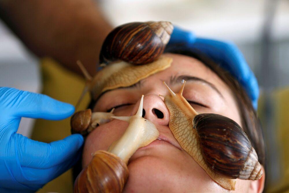 علياء فارس، 27 عاماً، خلال جلسة تدليك الوجه بواسطة الحلزونات البرية الأفريقية العملاقة، التي تعتبر مصدراً لتعزيز مادة الكولاجين في الجلد، في مركز تجميل في عمان، الأردن، 16 سبتمبر / أيلول 2020