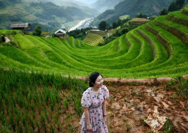 فتاة تأخذ مكانا مناسبا لالتقاط صورة على خلفية مدرجات الأرز مو تسانغ تشاي، فيتنام 18 سبتمبر 2020