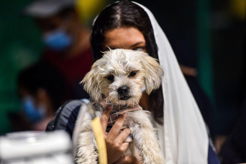 فتاة برفقة كلبها في مقهى Barking Lot في مدينة الخبر، المملكة العربية السعودية 25 سبتمبر 2020