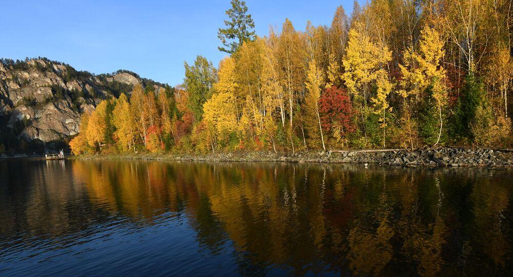 أشجار الخريف على ضفة بحيرة في إقليم كراسنويارسكي كراي، روسيا 21سبتمبر 2020