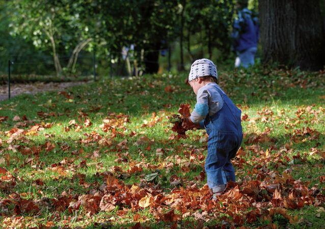 طفل يجمع أواق الخريف في الحديقة العامة في بلدة غاتشينا، إقليم لينينغراد، روسيا 27 سبتمبر 2020